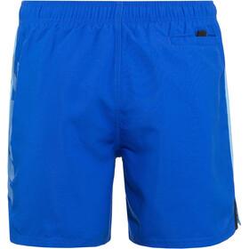 "Nike Swim Rift Vital 3"" Shorts de Volley Hombre, hyper royal"